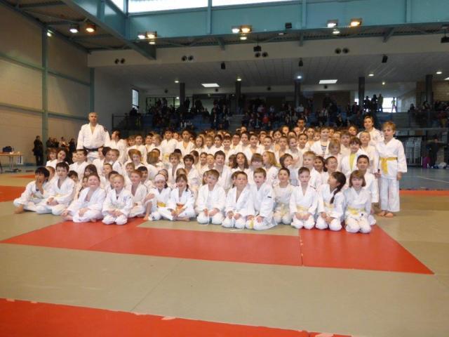 tournoi des petits senshis à Sarralbe 22 février 2014