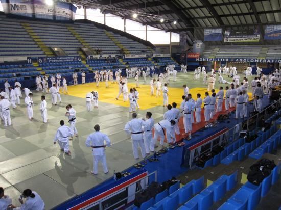 26 ème stage international du Judo à Montpellier