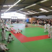 Mosellanes à Sarreguemines  15-05-2012